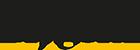 Blygold Logo